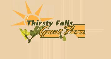 Thirsty Falls Guest Farm Magaliesberg